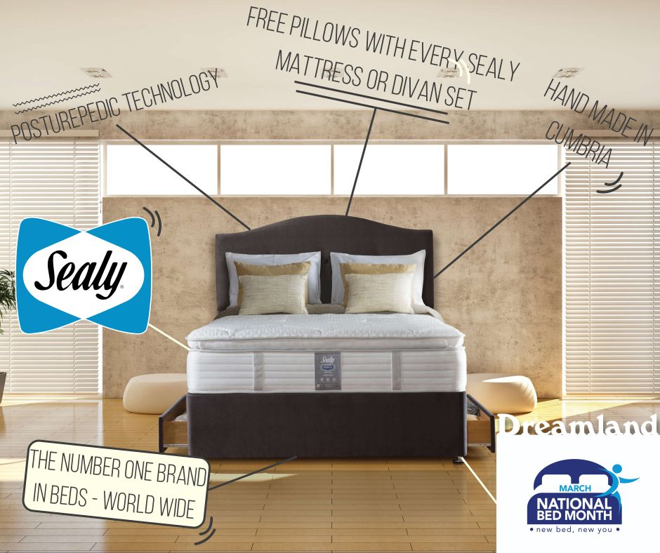 sealy national bed month offers dreamland